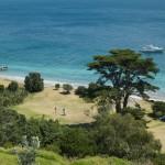 Motuora Homebay from Kiwi track 2012