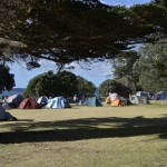 Home Bay camp ground-2014-03-08 (6)