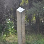Signpost dating forest planting