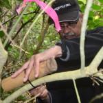 Nattu, MRS treasurer, attaching bamboo wetapunga house.