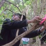 Natty, MRS treasurer, attaching bamboo wetapunga house.