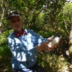 John Stewart with Pycroft's petrel